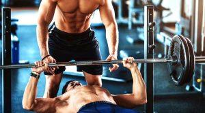 Recuperador muscular